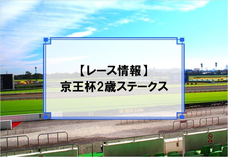 「京王杯2歳ステークス」レース情報