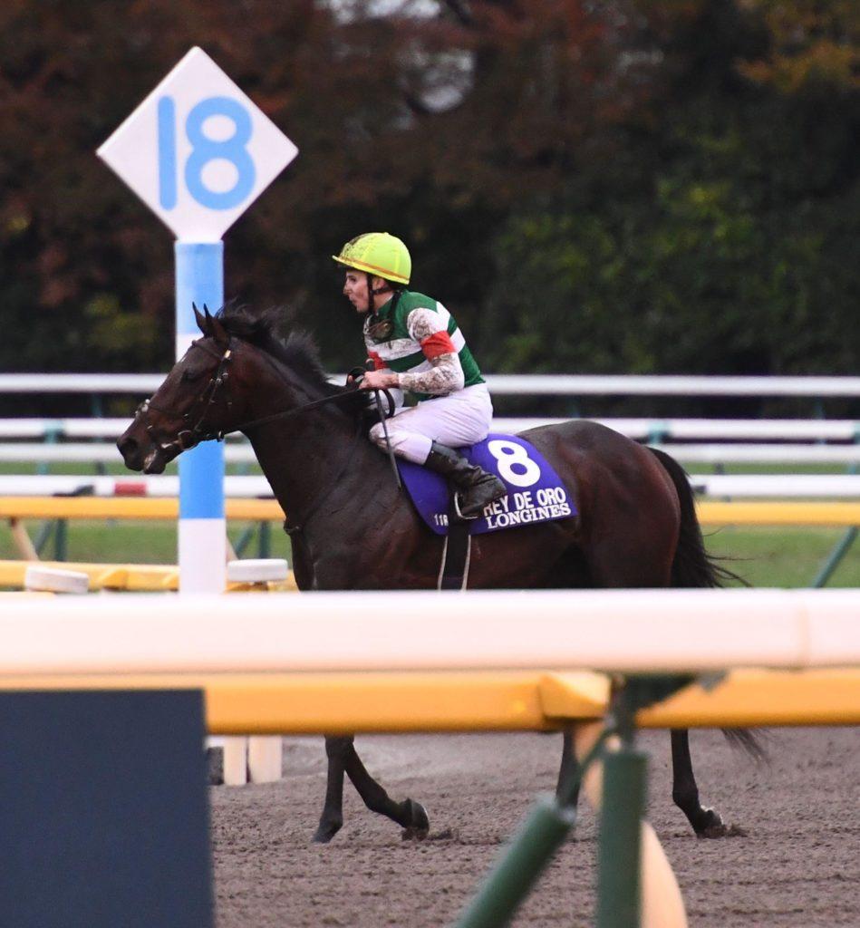 【ジャパンC】11着レイデオロは有馬で引退へ、陣営は有終Vに意欲