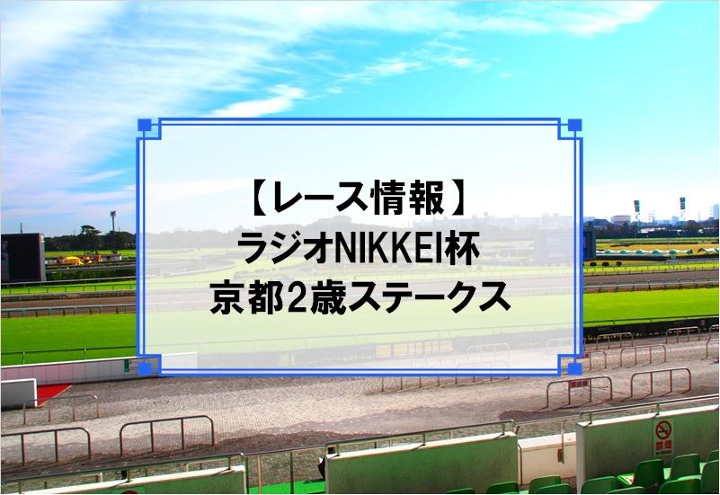 「ラジオNIKKEI杯京都2歳ステークス」レース情報