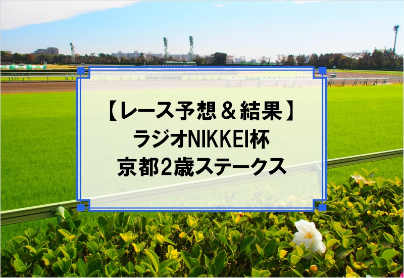 「ラジオNIKKEI杯京都2歳ステークス 2019」の予想と結果
