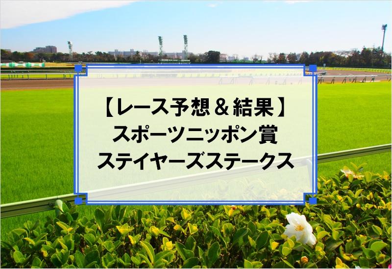 「スポーツニッポン賞ステイヤーズステークス 2019」の予想と結果