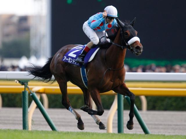 【競馬】アーモンドアイ熱発で香港カップ回避、次は有馬記念?