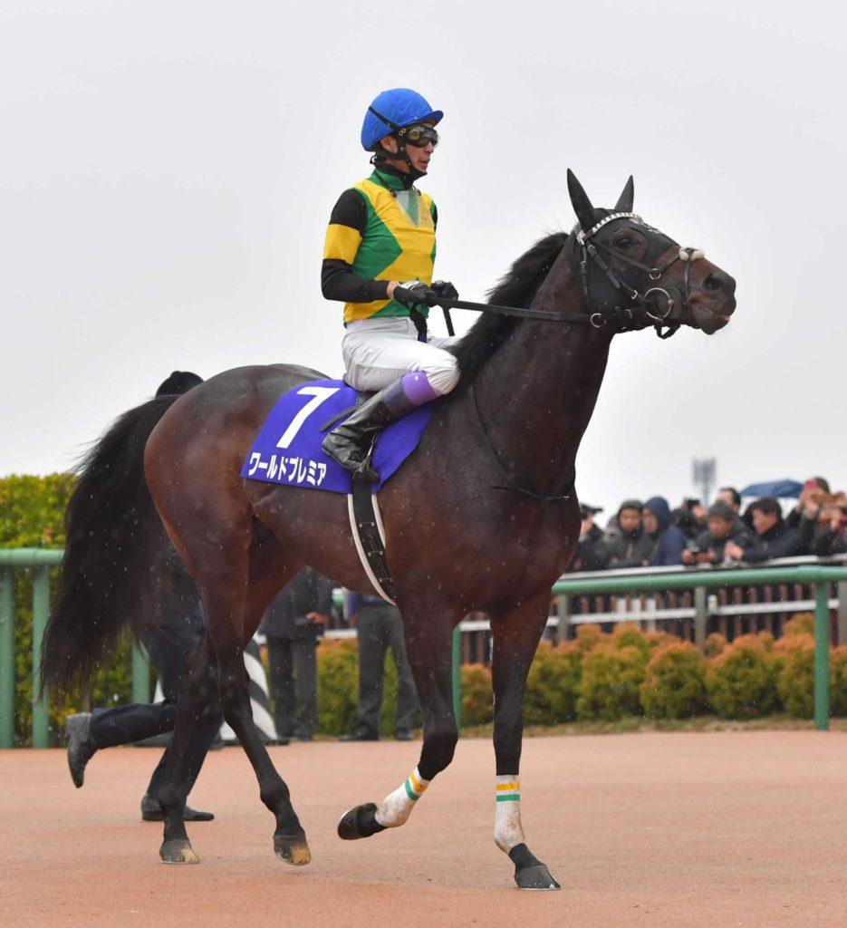 【有馬記念】ワールドプレミア×武豊の神騎乗